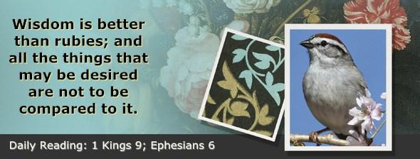 https://bibletruthpublishers.com/ComfortOfScriptures/wp-content/uploads/cos-hdg-2017-279.jpg