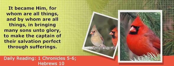 https://bibletruthpublishers.com/ComfortOfScriptures/wp-content/uploads/cos-hdg-2017-319.jpg