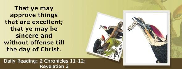 https://bibletruthpublishers.com/ComfortOfScriptures/wp-content/uploads/cos-hdg-2017-345.jpg