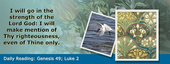 https://bibletruthpublishers.com/ComfortOfScriptures/wp-content/uploads/cos-hdg-2018-047.jpg