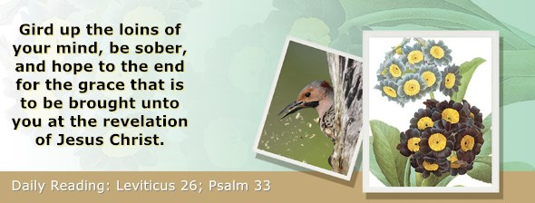 https://bibletruthpublishers.com/ComfortOfScriptures/wp-content/uploads/cos-hdg-2018-112.jpg
