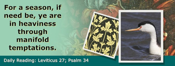 https://bibletruthpublishers.com/ComfortOfScriptures/wp-content/uploads/cos-hdg-2018-113.jpg