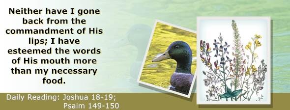 https://bibletruthpublishers.com/ComfortOfScriptures/wp-content/uploads/cos-hdg-2018-194.jpg