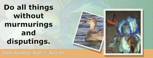 https://bibletruthpublishers.com/ComfortOfScriptures/wp-content/uploads/cos-hdg-2018-220.jpg