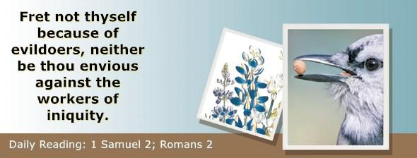 https://bibletruthpublishers.com/ComfortOfScriptures/wp-content/uploads/cos-hdg-2018-224.jpg