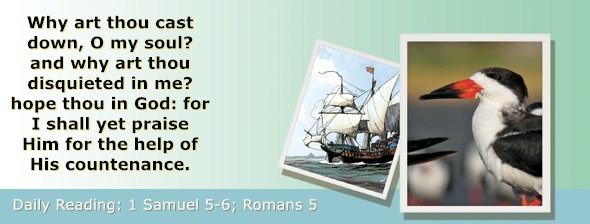 https://bibletruthpublishers.com/ComfortOfScriptures/wp-content/uploads/cos-hdg-2018-227.jpg