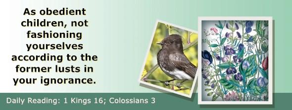 https://bibletruthpublishers.com/ComfortOfScriptures/wp-content/uploads/cos-hdg-2018-286.jpg