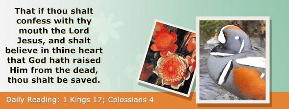 https://bibletruthpublishers.com/ComfortOfScriptures/wp-content/uploads/cos-hdg-2018-287.jpg