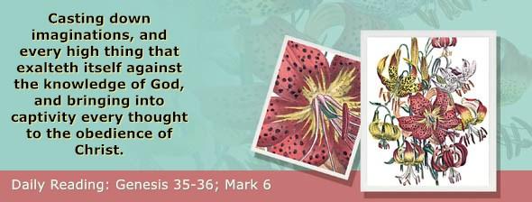 https://bibletruthpublishers.com/ComfortOfScriptures/wp-content/uploads/cos-hdg-2019-034.jpg