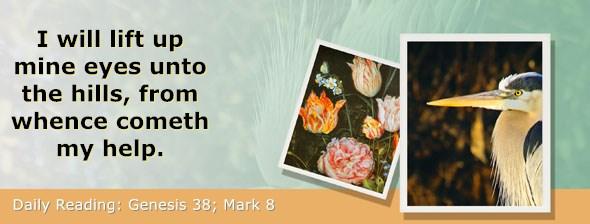 https://bibletruthpublishers.com/ComfortOfScriptures/wp-content/uploads/cos-hdg-2019-036.jpg