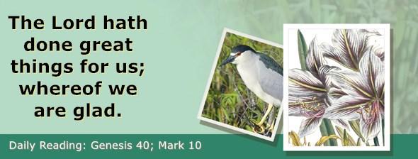 https://bibletruthpublishers.com/ComfortOfScriptures/wp-content/uploads/cos-hdg-2019-038.jpg