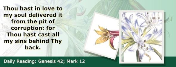 https://bibletruthpublishers.com/ComfortOfScriptures/wp-content/uploads/cos-hdg-2019-040.jpg