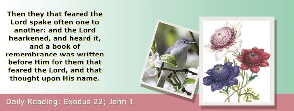 https://bibletruthpublishers.com/ComfortOfScriptures/wp-content/uploads/cos-hdg-2019-070.jpg