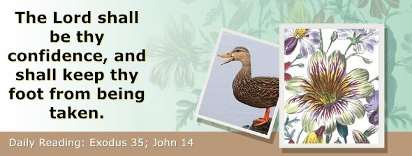 https://bibletruthpublishers.com/ComfortOfScriptures/wp-content/uploads/cos-hdg-2019-083.jpg