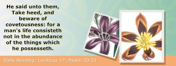 https://bibletruthpublishers.com/ComfortOfScriptures/wp-content/uploads/cos-hdg-2019-103.jpg