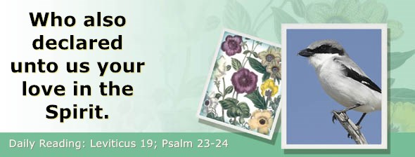 https://bibletruthpublishers.com/ComfortOfScriptures/wp-content/uploads/cos-hdg-2019-105.jpg
