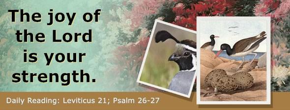 https://bibletruthpublishers.com/ComfortOfScriptures/wp-content/uploads/cos-hdg-2019-107.jpg