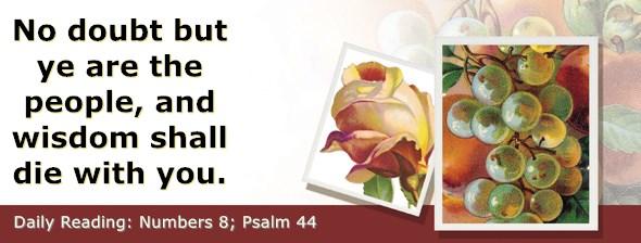https://bibletruthpublishers.com/ComfortOfScriptures/wp-content/uploads/cos-hdg-2019-121.jpg