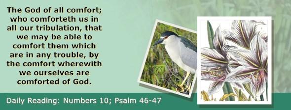 https://bibletruthpublishers.com/ComfortOfScriptures/wp-content/uploads/cos-hdg-2019-123.jpg