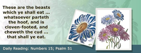 https://bibletruthpublishers.com/ComfortOfScriptures/wp-content/uploads/cos-hdg-2019-127.jpg