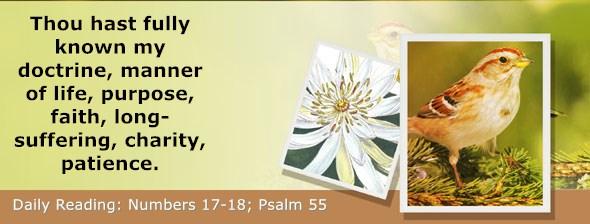https://bibletruthpublishers.com/ComfortOfScriptures/wp-content/uploads/cos-hdg-2019-129.jpg