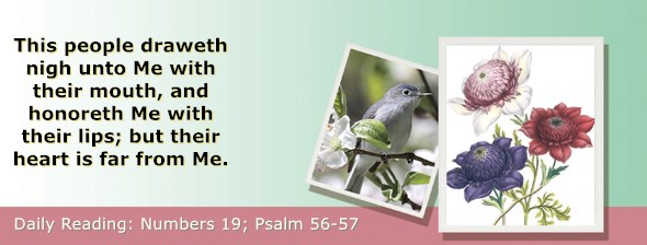 https://bibletruthpublishers.com/ComfortOfScriptures/wp-content/uploads/cos-hdg-2019-130.jpg