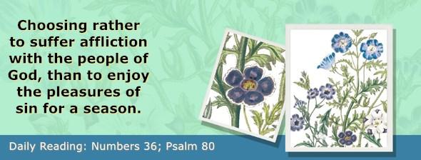 https://bibletruthpublishers.com/ComfortOfScriptures/wp-content/uploads/cos-hdg-2019-147.jpg