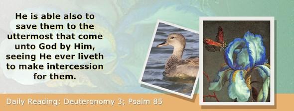 https://bibletruthpublishers.com/ComfortOfScriptures/wp-content/uploads/cos-hdg-2019-150.jpg