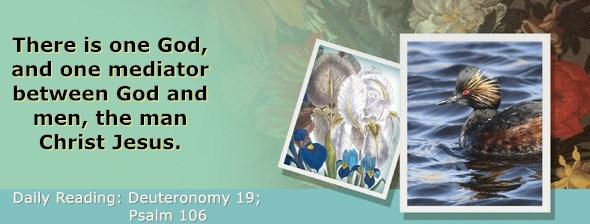 https://bibletruthpublishers.com/ComfortOfScriptures/wp-content/uploads/cos-hdg-2019-165.jpg