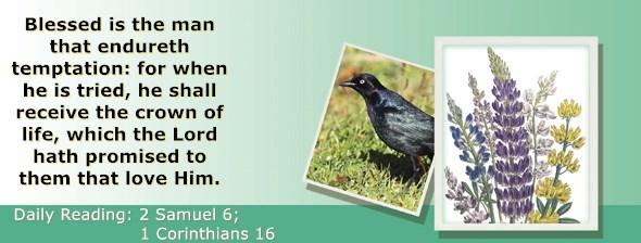 https://bibletruthpublishers.com/ComfortOfScriptures/wp-content/uploads/cos-hdg-2019-254.jpg