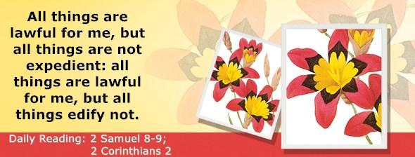 https://bibletruthpublishers.com/ComfortOfScriptures/wp-content/uploads/cos-hdg-2019-256.jpg