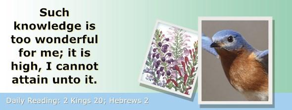 https://bibletruthpublishers.com/ComfortOfScriptures/wp-content/uploads/cos-hdg-2019-311.jpg