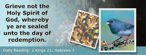 https://bibletruthpublishers.com/ComfortOfScriptures/wp-content/uploads/cos-hdg-2019-312.jpg