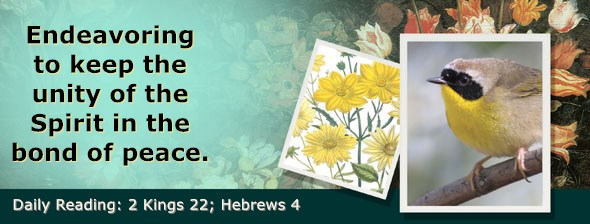 https://bibletruthpublishers.com/ComfortOfScriptures/wp-content/uploads/cos-hdg-2019-313.jpg