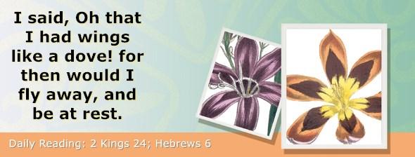 https://bibletruthpublishers.com/ComfortOfScriptures/wp-content/uploads/cos-hdg-2019-315.jpg