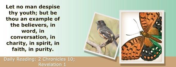 https://bibletruthpublishers.com/ComfortOfScriptures/wp-content/uploads/cos-hdg-2019-344.jpg