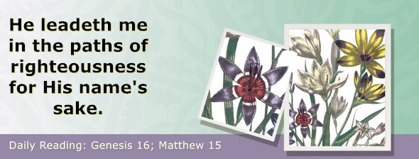 https://bibletruthpublishers.com/ComfortOfScriptures/wp-content/uploads/cos-hdg-2020-015.jpg