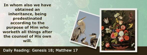 https://bibletruthpublishers.com/ComfortOfScriptures/wp-content/uploads/cos-hdg-2020-017.jpg