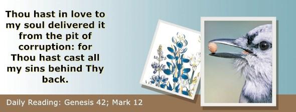 https://bibletruthpublishers.com/ComfortOfScriptures/wp-content/uploads/cos-hdg-2020-040.jpg
