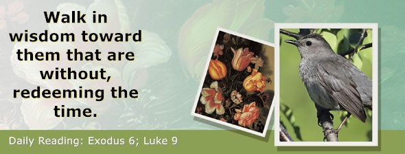 https://bibletruthpublishers.com/ComfortOfScriptures/wp-content/uploads/cos-hdg-2020-054.jpg