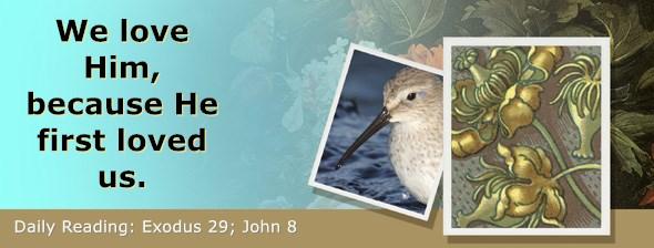 https://bibletruthpublishers.com/ComfortOfScriptures/wp-content/uploads/cos-hdg-2020-078.jpg