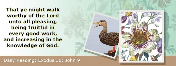 https://bibletruthpublishers.com/ComfortOfScriptures/wp-content/uploads/cos-hdg-2020-079.jpg
