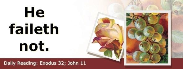 https://bibletruthpublishers.com/ComfortOfScriptures/wp-content/uploads/cos-hdg-2020-081.jpg
