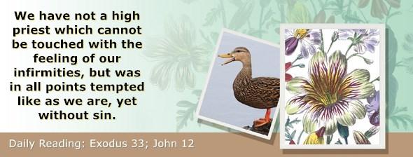 https://bibletruthpublishers.com/ComfortOfScriptures/wp-content/uploads/cos-hdg-2020-082.jpg