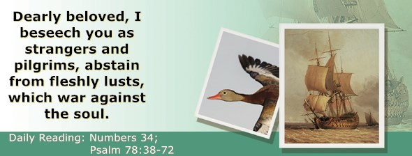 https://bibletruthpublishers.com/ComfortOfScriptures/wp-content/uploads/cos-hdg-2020-146.jpg
