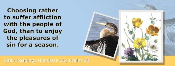 https://bibletruthpublishers.com/ComfortOfScriptures/wp-content/uploads/cos-hdg-2020-148.jpg