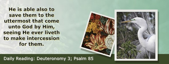 https://bibletruthpublishers.com/ComfortOfScriptures/wp-content/uploads/cos-hdg-2020-151.jpg