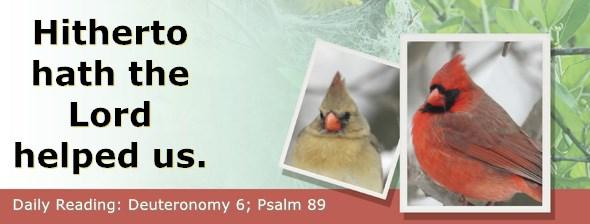 https://bibletruthpublishers.com/ComfortOfScriptures/wp-content/uploads/cos-hdg-2020-154.jpg