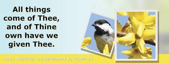 https://bibletruthpublishers.com/ComfortOfScriptures/wp-content/uploads/cos-hdg-2020-156.jpg