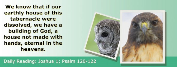 https://bibletruthpublishers.com/ComfortOfScriptures/wp-content/uploads/cos-hdg-2020-181.jpg
